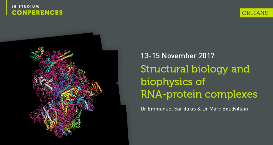 Structural biology and biophysics of RNA-protein complexes