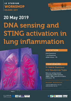 DNA sensing and STING activation in lung inflammation