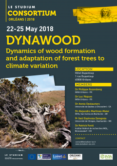 DYNAWOOD (Dynamics of wood formation and adaptation of forest trees to climate variation)
