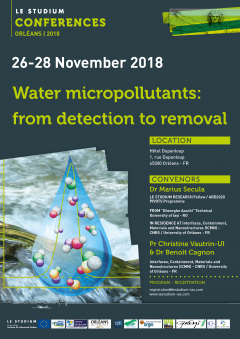 Water micropollutants: from detection to removal