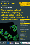 Pharmacological and nutritional targeting of voltage-gated sodium channels in the treatment of epithelial cancers