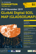 GLobAl Digital SOIL MAP (GLADSOILMAP)