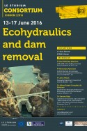 Ecohydraulics and dam removal