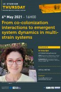 From co-colonization interactions to emergent system dynamics in multi-strain systems