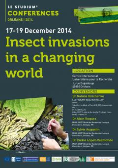Insect invasions in a changing world