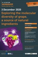 Exploring the molecular diversity of grape, a source of natural ingredients