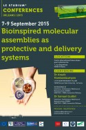Bioinspired molecular assemblies as protective and delivery systems