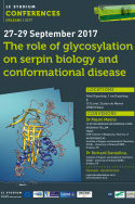 The role of glycosylation on serpin biology and conformational disease