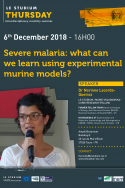 Severe malaria: what can we learn using experimental murine models?