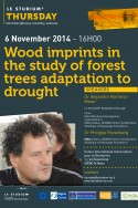 Wood imprints in the study of forest trees adaptation to drought: interdisciplinary approaches